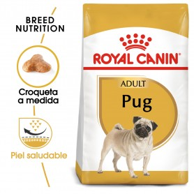 Royal Canin Pug - Carlino