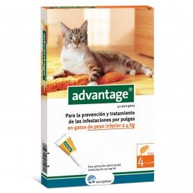 Advantage gatti