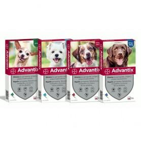 Advantix Pipetta tripla protezione per cani