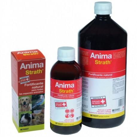 Anima Strath