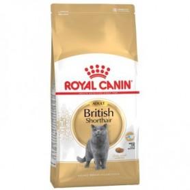 Royal Canin Razas British Shorthair 34