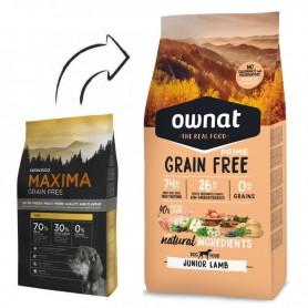 Máxima Grain Free Mini