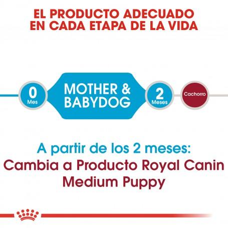 Pienso para cachorro Royal Canin Medium Starter