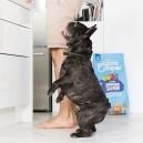 Los mejores piensos sin cereales Edgard & Cooper, para perros