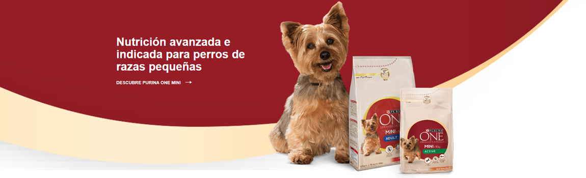 Purina one-0