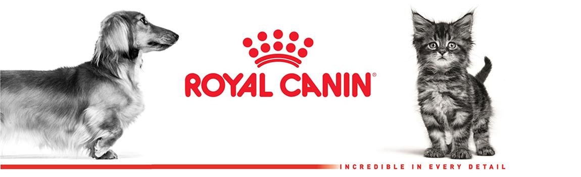 Royal canin-1
